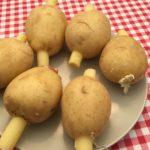 Potatobomb stop dicht met de vulling